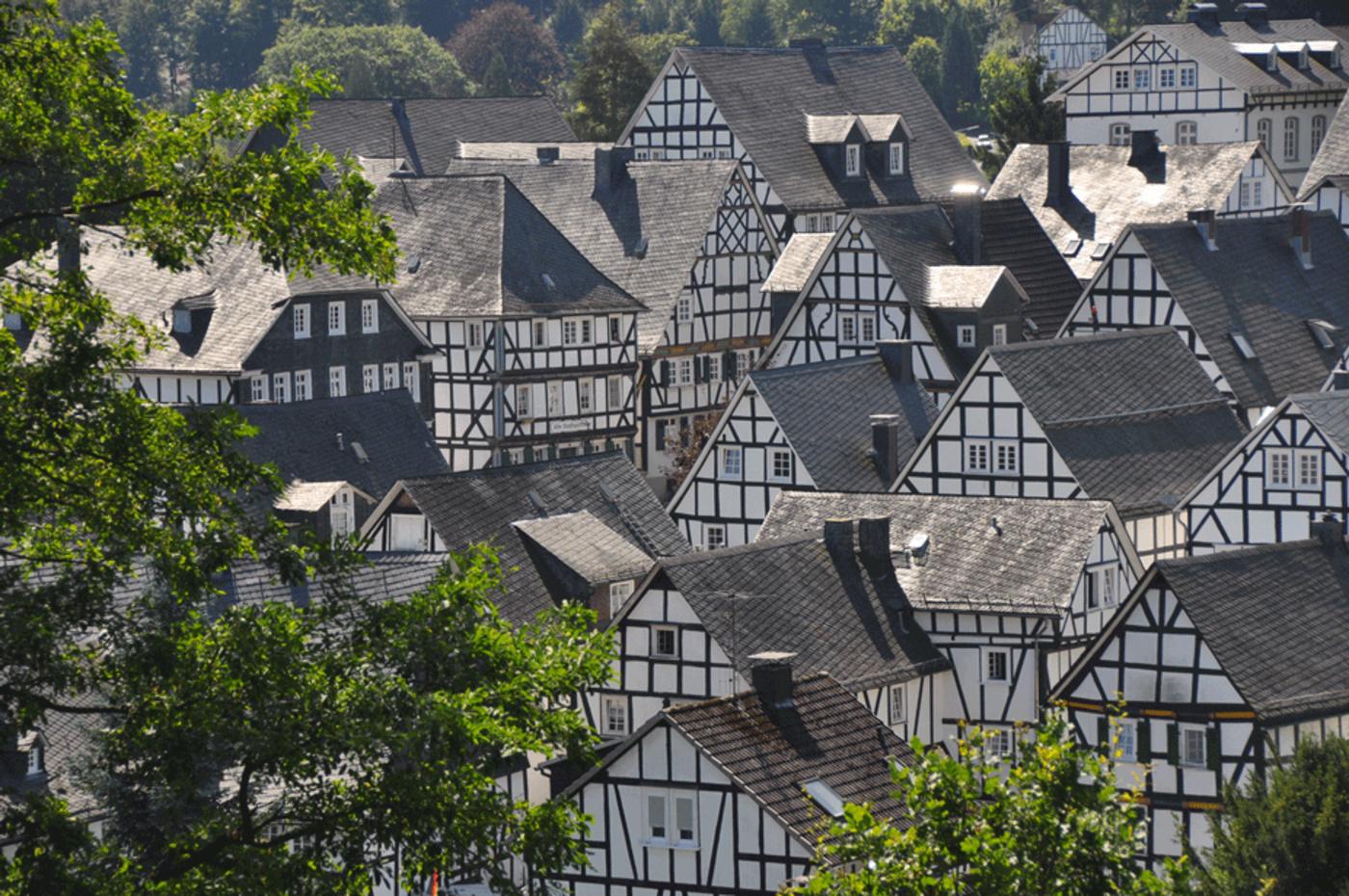 Bäume im Vordergrund, dahinter ein Dorf aus Fachwerkhäusern